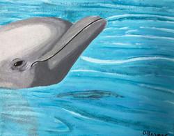 Gaziano_ashley_dolphin acrylic