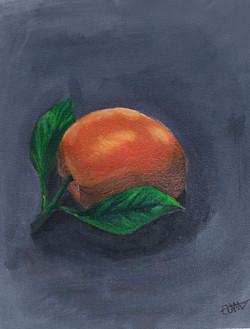 AshleyMcGlynn_acrylic_orange study