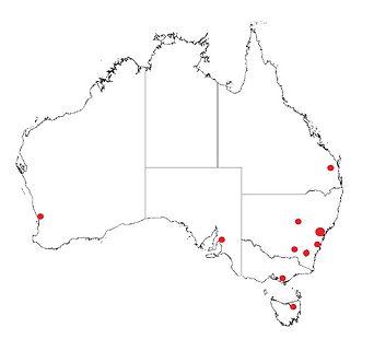 MAP LOCATION PROJECTS.PNG