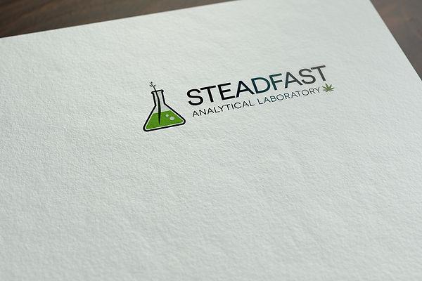 Steadfast_Logo_mock1.jpg