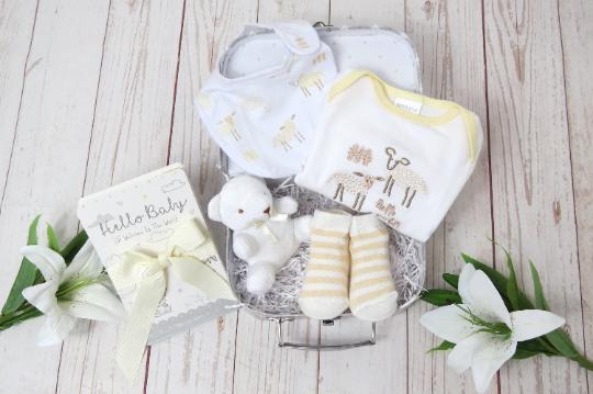 Small baby gift, Baby sheep hamper