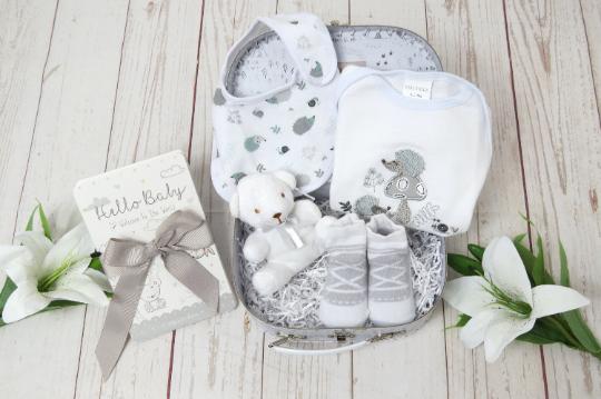 Small baby gift, Baby hedgehog hamper