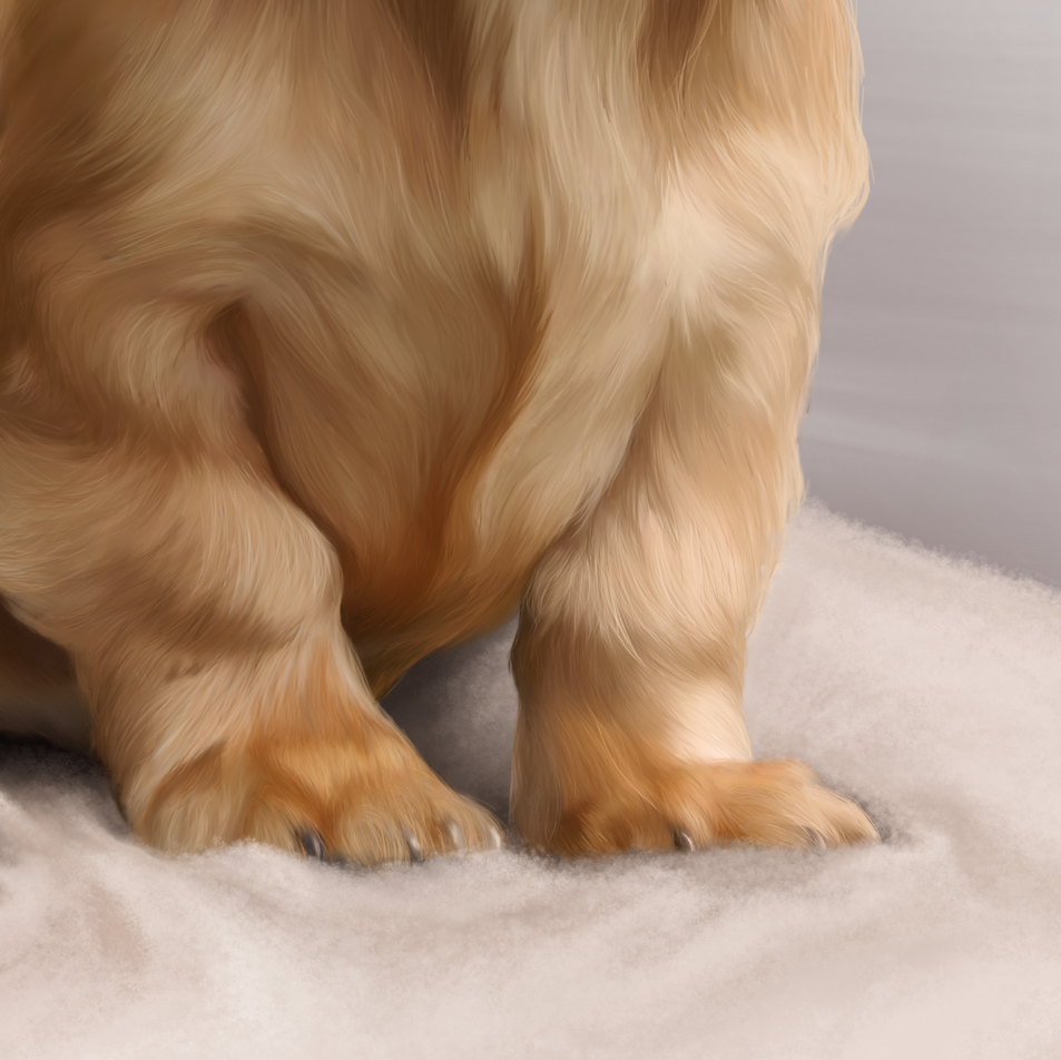 Pippy Cropped feet.png