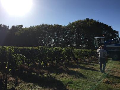 Harvests 2018