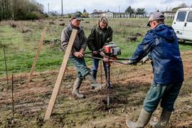 Plantations 2017 - Vignobles Coudert