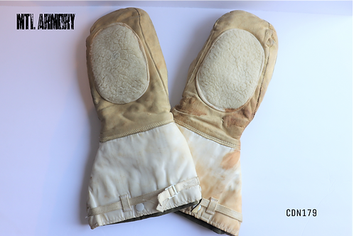 CANADIAN ISSUED ECW MITTENS WITH LINER