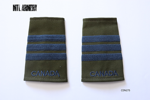 ROYAL CANADIAN AIR FORCE LIEUTENANT COLONEL EPAULETTES RCAF SLIP ONS