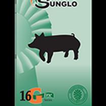 Sunglo 16 G 50#