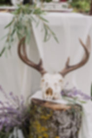 tiaranicole.lavender-1944.jpg