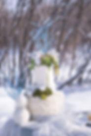 Frozen-32.jpg