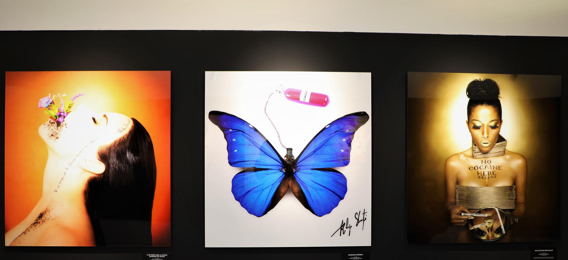 Art Is My Hope - Caldea