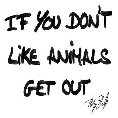 Tag_If_You_Dont_Like_Animal_BD.jpg
