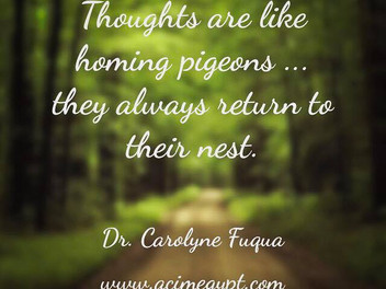 Thoughts & Pigeons