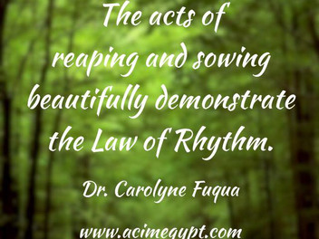Reaping and Sowing