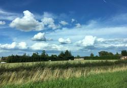 Harvest Colours Lincolnshire