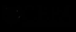 logo-cepa-white.png
