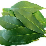 BAY-LEAVES-FRESH-PRODUCE-GROUP-LLC1.jpg
