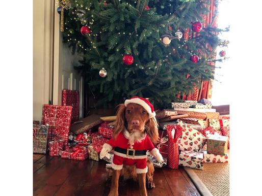 Getting Through Christmas