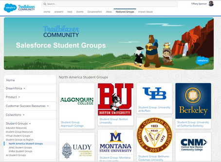 What is a Salesforce Student Group?