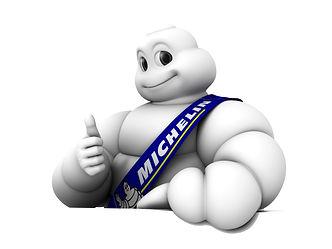Vi forhandler av bla Michelin dekk