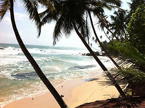Wijaya Beach Sri Lanka