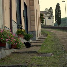 Casa Giannini 2.jpg