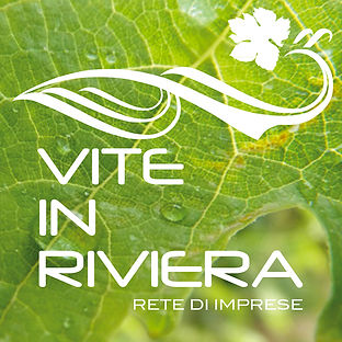 VITE IN RIVIERA-bottone1.jpg