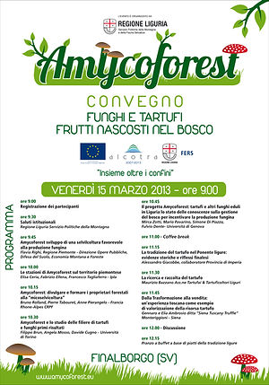 Amycoforest-locandina.jpg