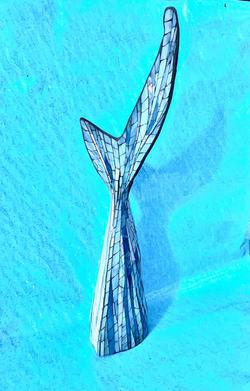 Shark Tail