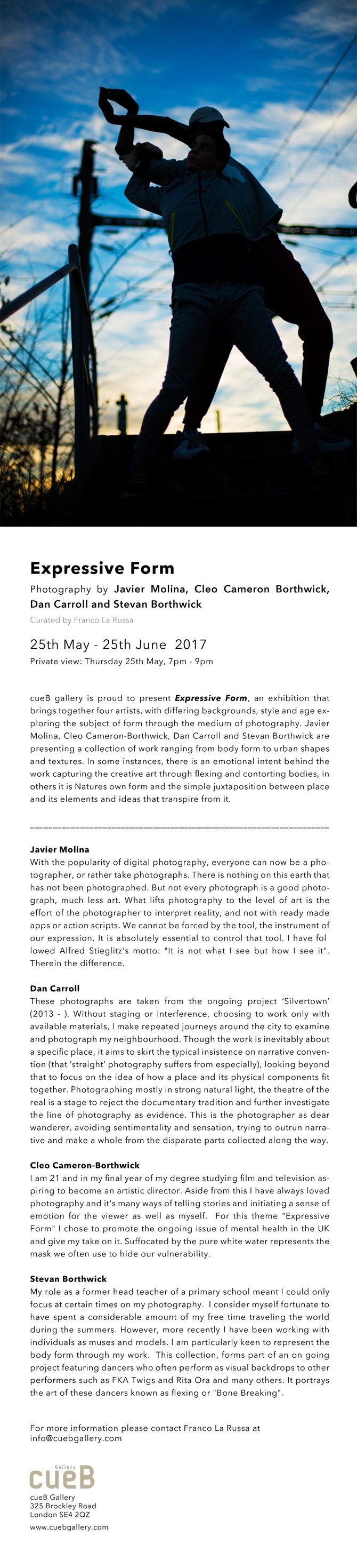 'Expressive Form' exhibition