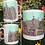 Thumbnail: Stratford Upon Avon Mug