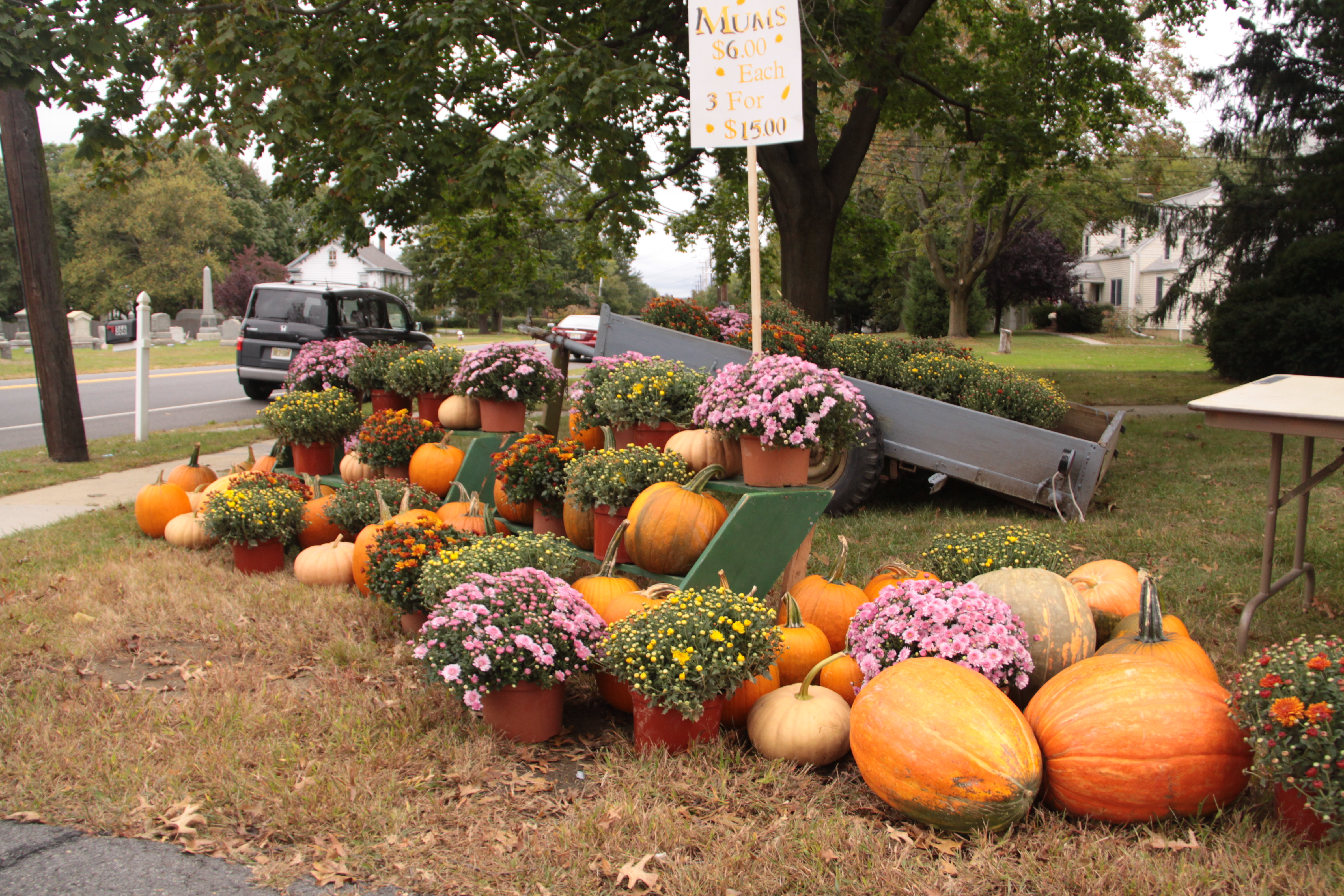 2012 Harvest Fair 013