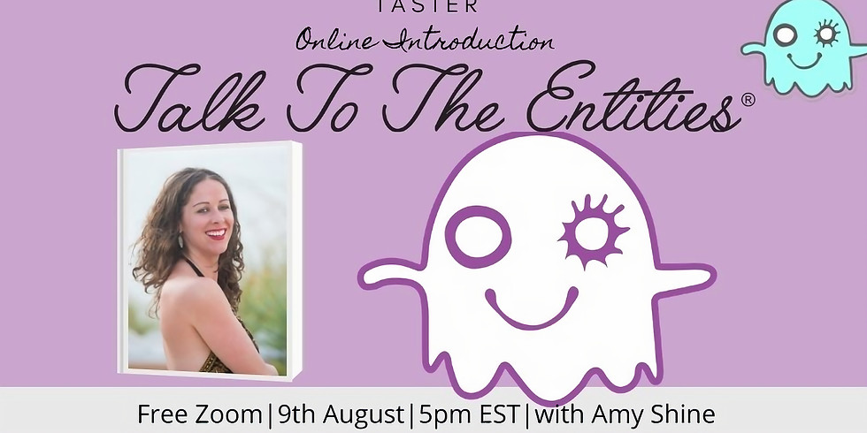 Taster Introduction to Talk to the Entities® Replay