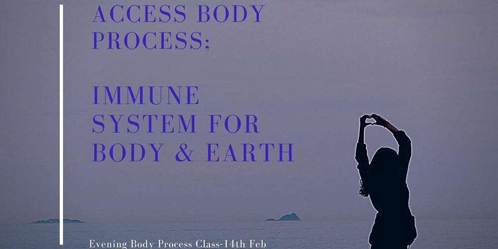 Access Body Process: Evening Class