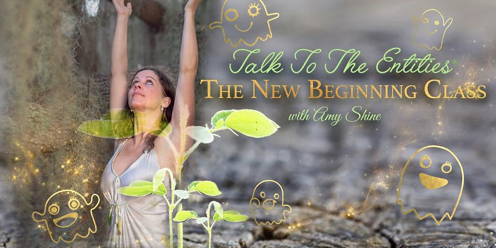 Talk To The Entities - The NEW Beginning Online