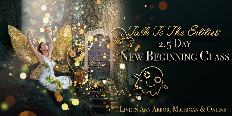 Talk To The Entities - The NEW Beginning in Ann Arbor, MI