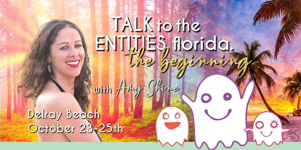 Talk To The Entities 2.5 Day Live Class Delray Beach