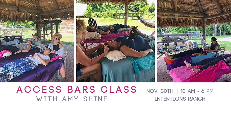 Access Bars Class at Intentions Ranch