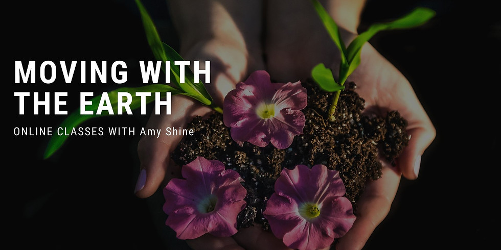 Movement with the Earth: Paid Sessions