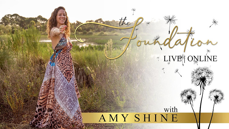 The Foundation Live in Florida & Online with Amy Shine