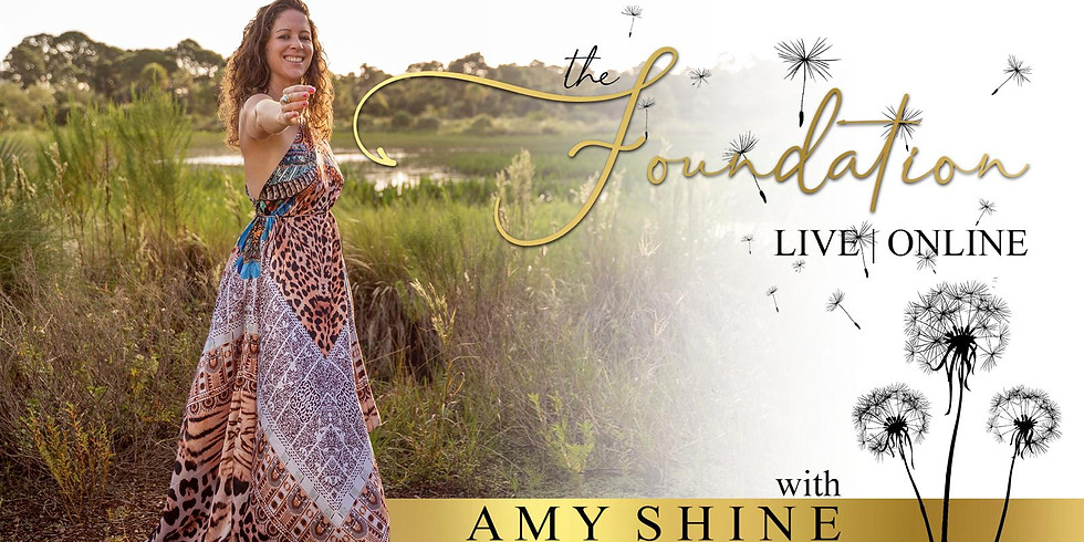 The Foundation with Amy Shine