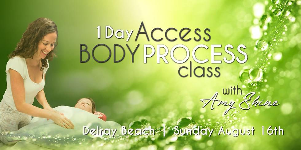 Access Body Process 1 Day Class