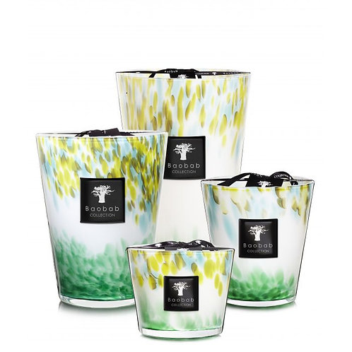 Baobab Eden Forest Candle