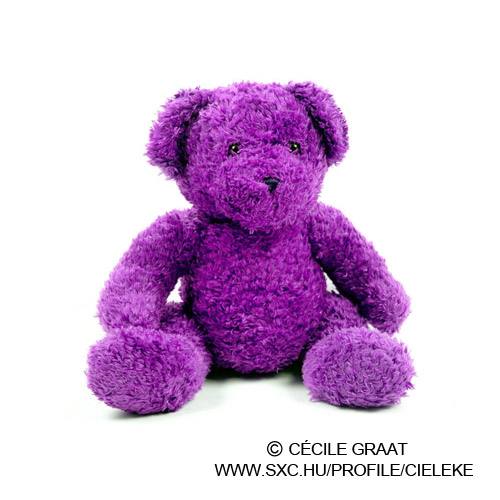 Purple Plush Toy Bear