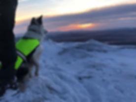 Mia on the mountains