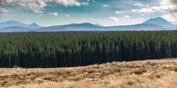 north coast landscape