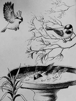 Shirley Leonardi - Taking Turns - chicka