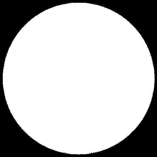 WHITE-BLIP-30.png