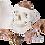 Thumbnail: Cráneo y cerebro modelo. DCVQ7070
