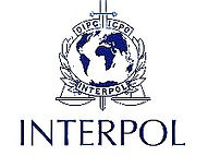 interpol_edited_edited.jpg